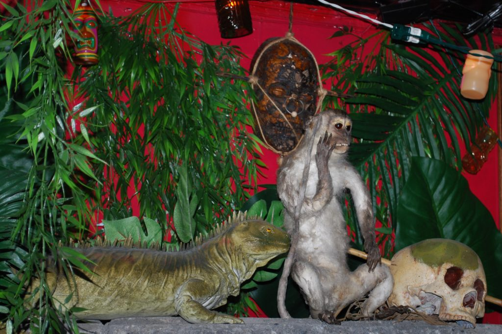 Stuffed monkey and lizard at Monkey Skull Voodoo Lounge